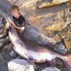 Pending new nebraska state record paddlefish!