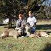 Preliminary Data Shows Record November Deer Harvest